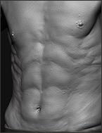 2013_Anatomy