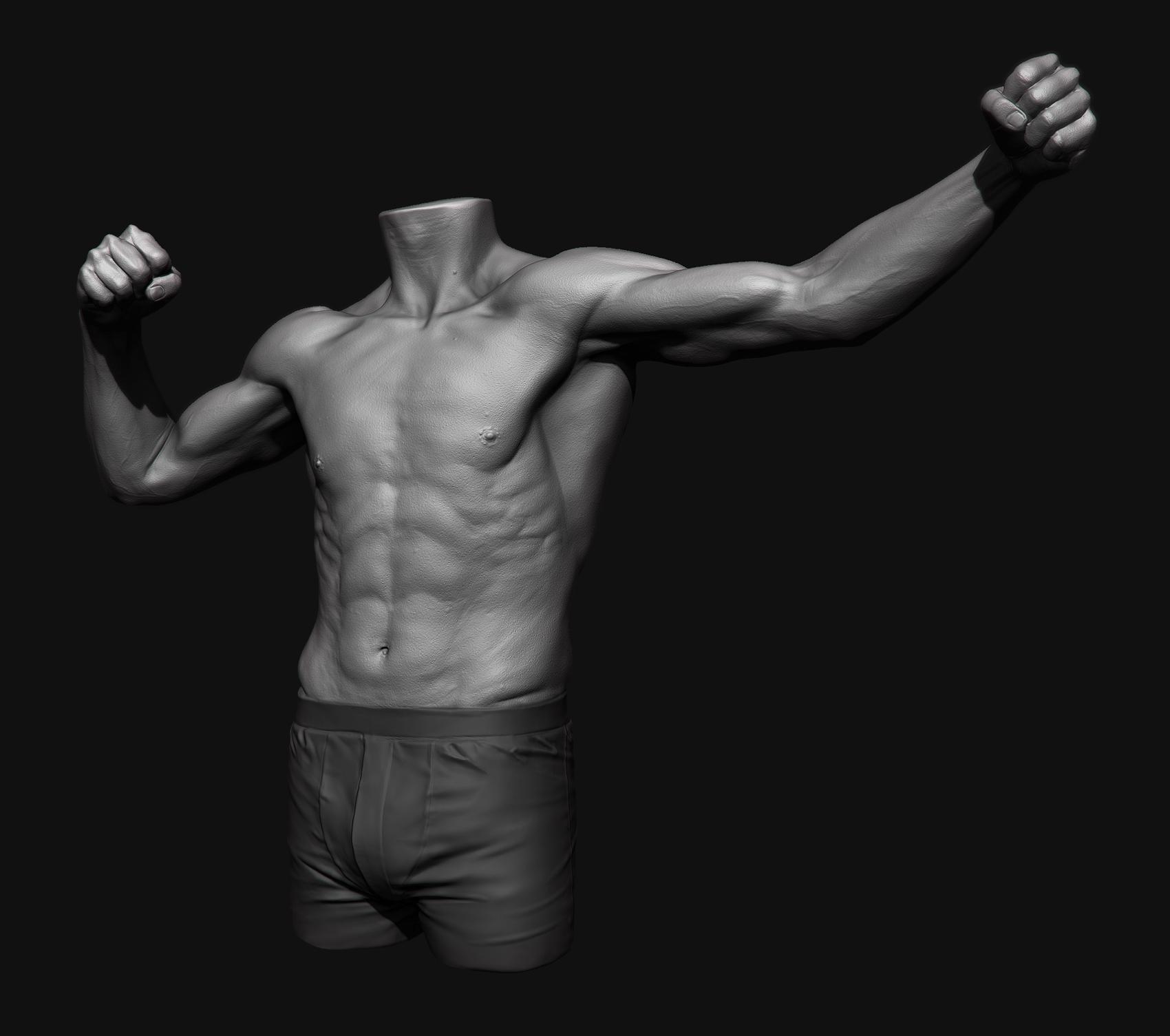 anatomy_study_main_mid_res.jpg